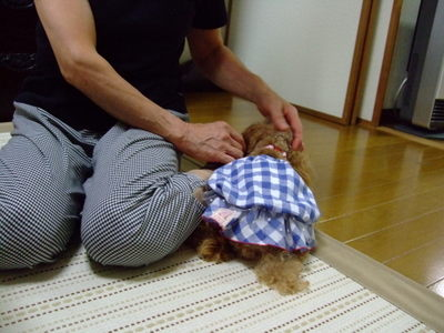 20097_147
