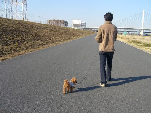 散歩は楽しでしゅね、パパ。